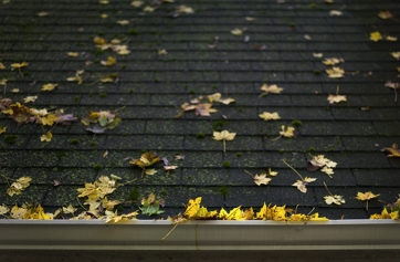 Fall Roof Preparation